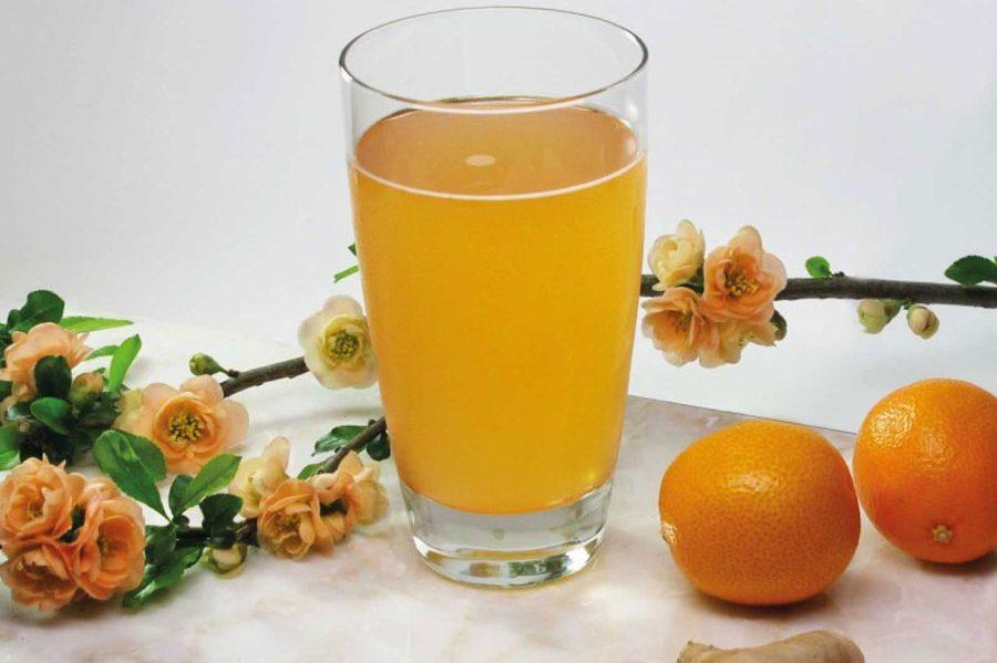 Kombucha içerken su tüketimi nasıl olmalı?